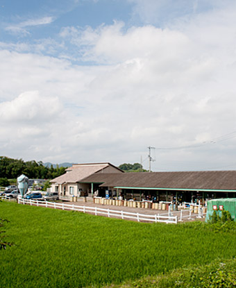 乗馬クラブ スタリオンステーブル 施設風景