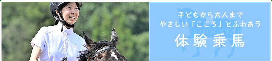 子どもから大人まで、やさしい「こころ」とふれあう。体験乗馬